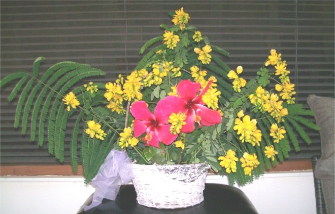 Yellow & Red Flwrs