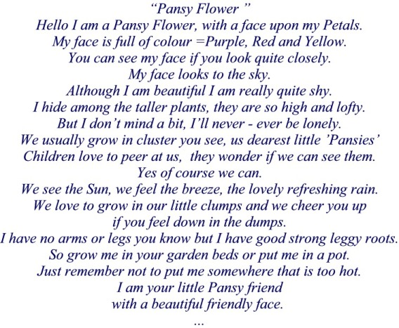 Poem Pansy Flower